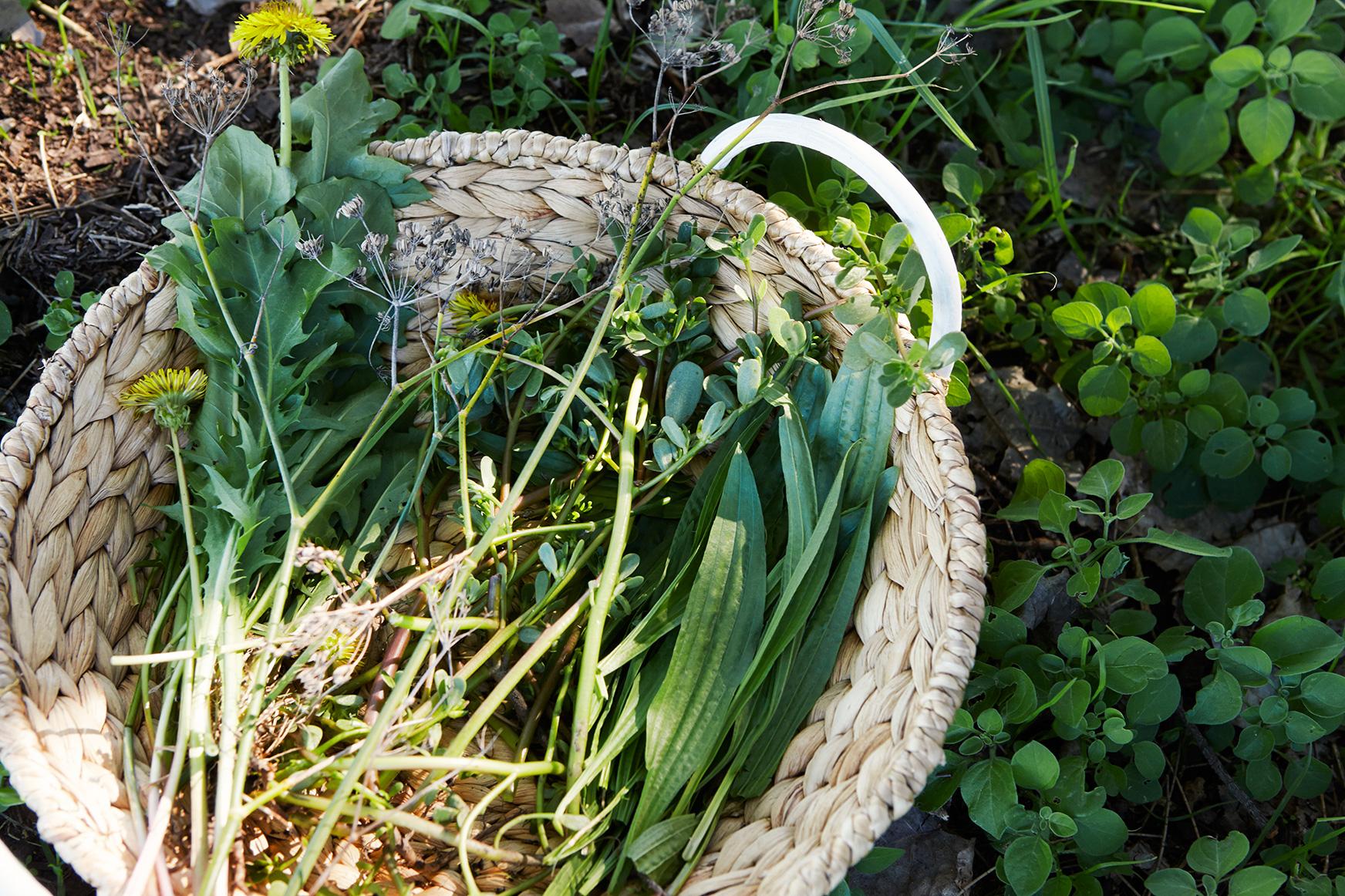 image by http://chrischen.com.au/
