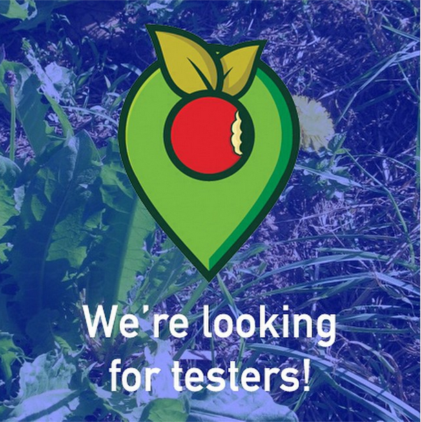We are looking for tester at WildfoodMap